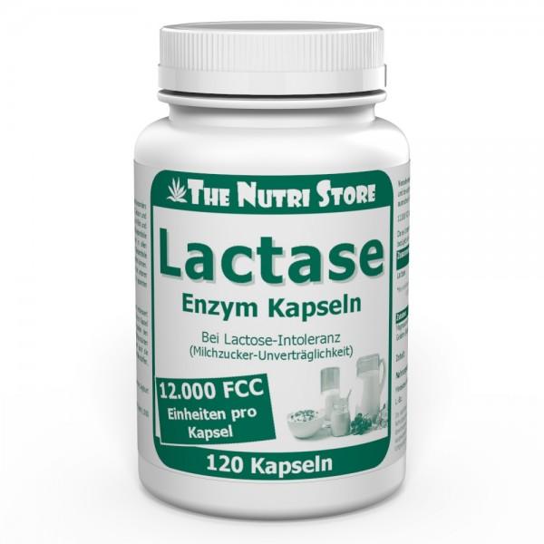 Lactase 12.000 FCC Enzym Kapseln 120 Stk. bei Lactose-Intoleranz